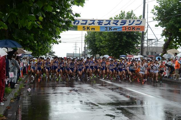 たきかわコスモスマラソン