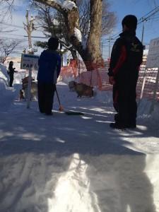 冬まつり 雪中パークゴルフ