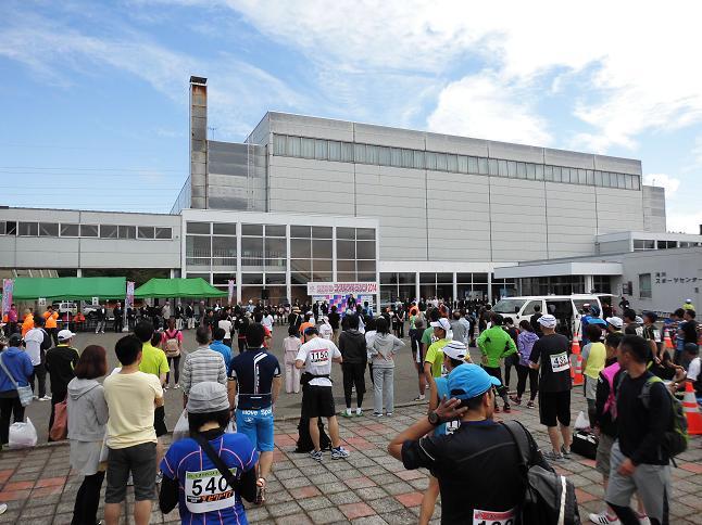 コスモスマラソン2014 1