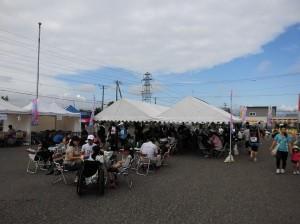 コスモスマラソン2014 6