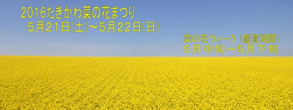 菜の花まつりFBカバー画像